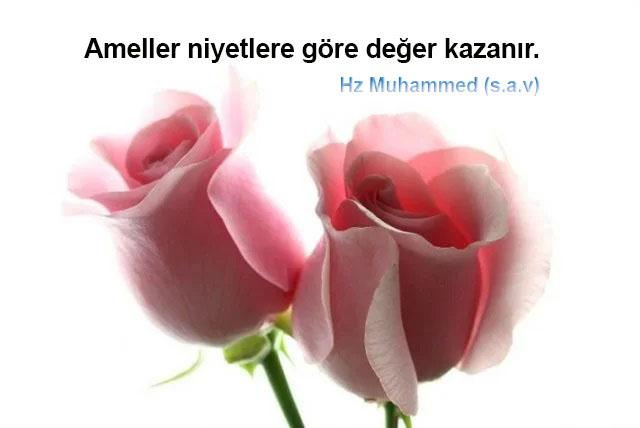 Hz. Muhammed Sözleri / Güzel Sözler